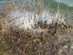 icicles on Thames